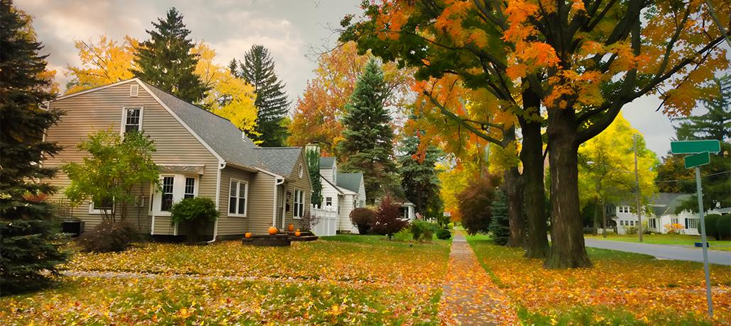 neighborhood_in_the_fall_hero