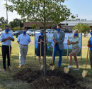 Atmos Energy Celebrates 811 Day by Planting 500 Trees