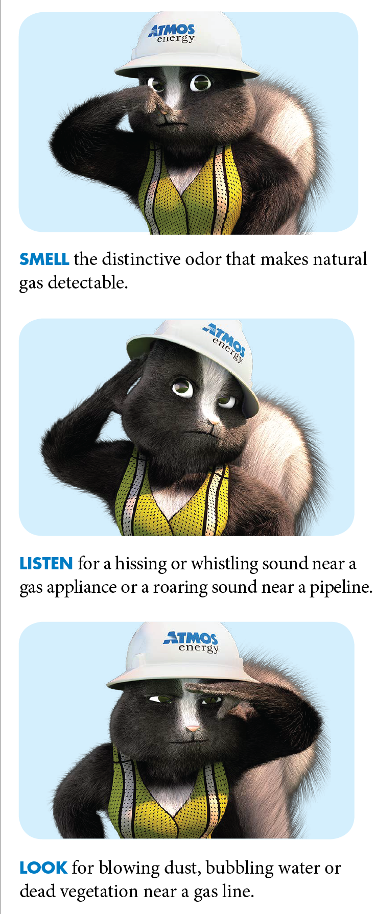 Does A Natural Gas Leak Smell Like A Skunk
